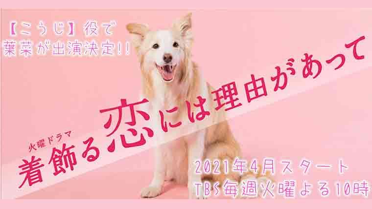 着飾る恋の犬