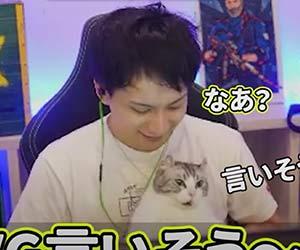 プロゲーマーけんきと飼い猫の画像